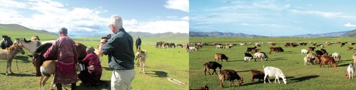 Begegnungen in der Mongolei
