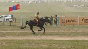 Pferderennen beim Nadaamfest