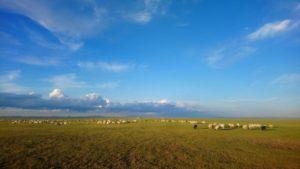 Weite in der Mongolei