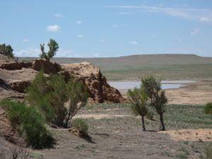 Bayanzag in der Mongolei