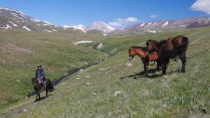 Zu Pferd unterwegs